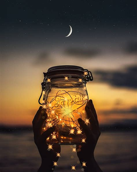 summer shine fireflies  summer nights