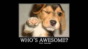 Skillet - Who's Awesome? You're awesome! - YouTube  Awesome