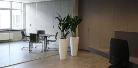 plantes de bureau plantes d 39 intérieur co bureau