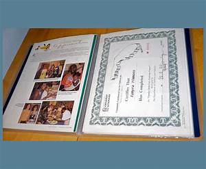 cda portfolio successful solutions professional With cda portfolio template