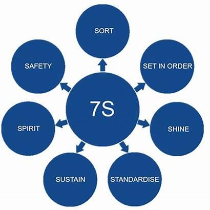 Standards 7s Seven