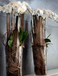 Orchideen Im Glas : orchideen im glas wohnideen basteln pinterest orchid ~ A.2002-acura-tl-radio.info Haus und Dekorationen