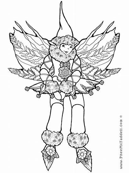 Coloring Fern Feather Elf Pages Getcolorings Printable