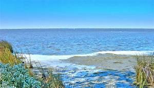 Beach In North Carolina Painting by M Bleichner