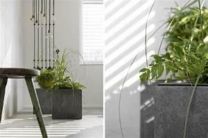 Pflanzkübel Mit Bewässerungssystem : dekoration asiatisches flair vor der sichtbetonwand mxliving ~ Frokenaadalensverden.com Haus und Dekorationen