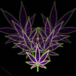My Photoshop leaf art #art #photoshop #pot #psychedelic # ...