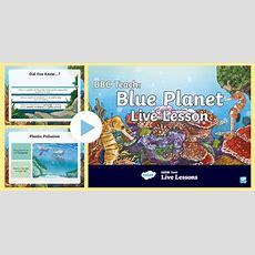 Free!  * New * Uks2 Bbc Teach Live Lesson Blue Planet