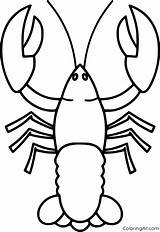 Lobster Coloringall sketch template