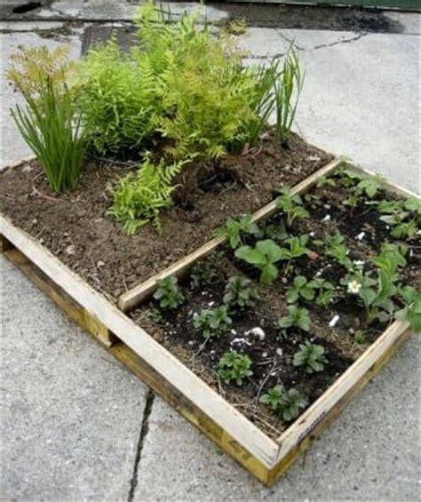 Creative Ideas For Portable Gardens  The Micro Gardener