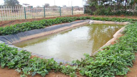 amiran kenya  twitter farmingiscool amiran dam liners