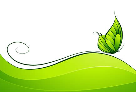 green butterfly vector graphic graphic hive