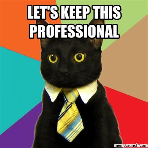 Professional Meme - let s keep this professional
