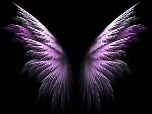 side view of angel wings Google Search