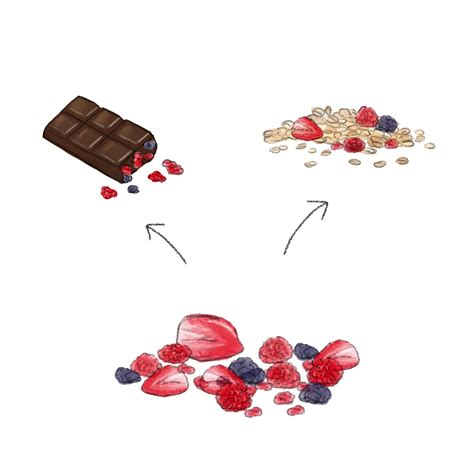 gevriesdroogd fruit tastestrik