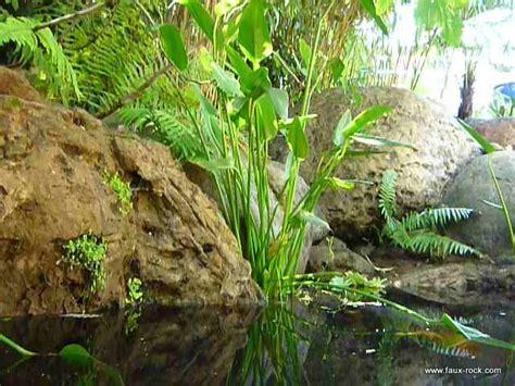 construction mur vegetal exterieur mur v 233 g 233 tal exterieur en faux rochers pour bassin aquatique etat mur vegetal faux
