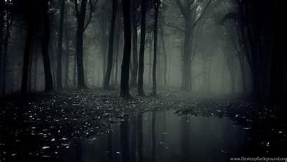 Dark Forest Resolution Wallpapers Desktop Background Uncalke