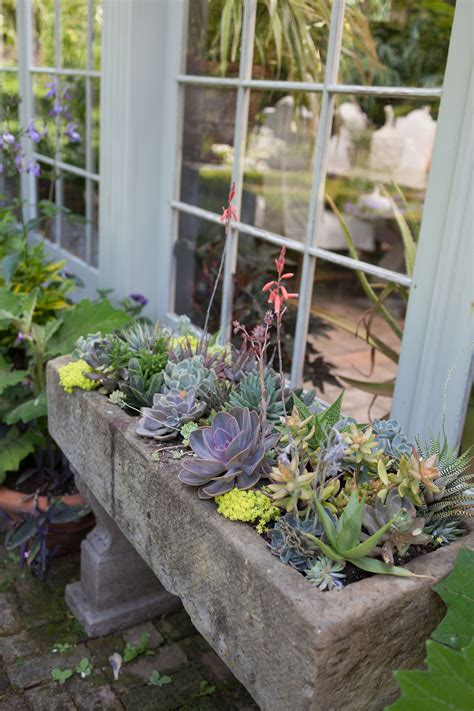 Easy Diy Gardening Projects If You Don't Have A Garden