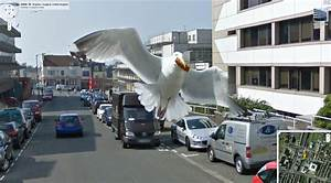 Google Street View Map : the best street view image ever it has my egg roll ~ Medecine-chirurgie-esthetiques.com Avis de Voitures