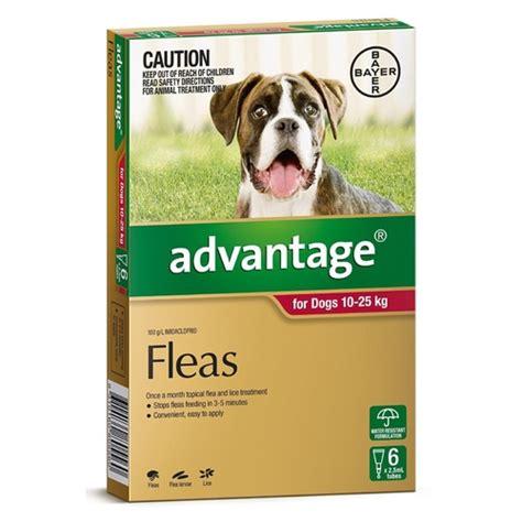 advantage flea control  large dogs