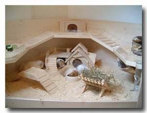 Kaninchenstall Selber Bauen Anleitung Kostenlos : modell luxus k fig bauplan f r eine top behausung f r ~ Lizthompson.info Haus und Dekorationen