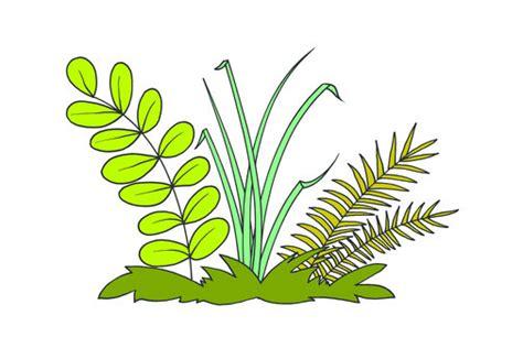 plants learnenglish kids british council