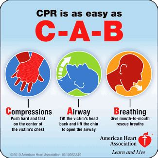 cpr steps  adults children  infants
