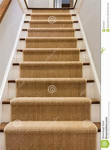 Escalier En Bois Avec Le Coureur De Tapis Image stock