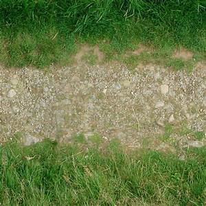 RoadsDirt0028 - Free Background Texture - path grass dirt ...