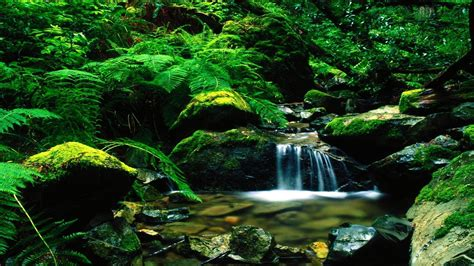 beautiful landscapes wallpapers wallpaper cave