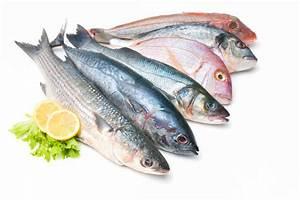 welke vis is gezond