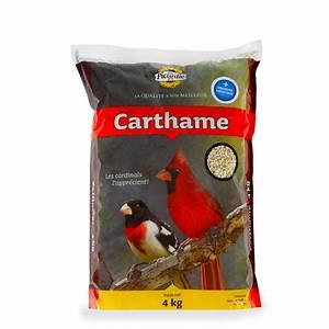 Graines De Tournesol Pour Oiseaux : graines de carthame pour oiseaux sauvages picardie ~ Dailycaller-alerts.com Idées de Décoration
