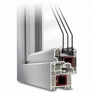 Joint Fenetre Pvc Double Vitrage : fen tre pvc aluplast profil ideal 5000 ~ Dailycaller-alerts.com Idées de Décoration