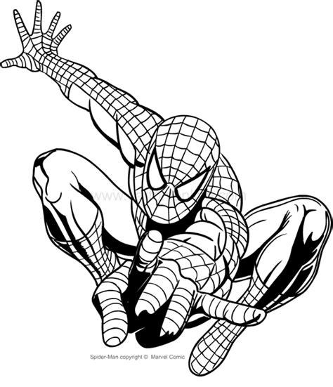 disegni  spiderman da colorare  stampare colorare