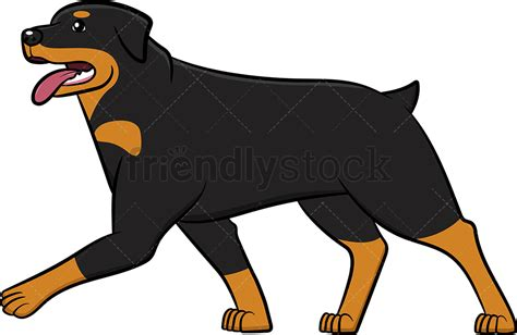 Rottweiler Walking With Tongue Out Cartoon Clipart Vector