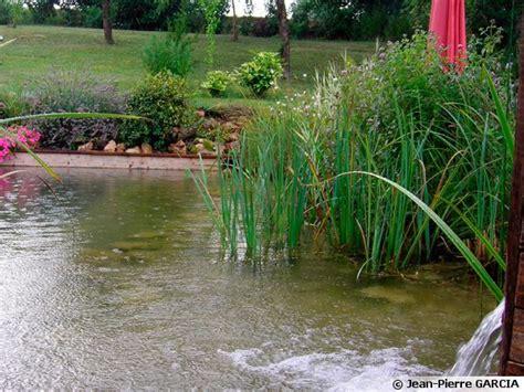 cuisiner en ligne construire une piscine naturelle