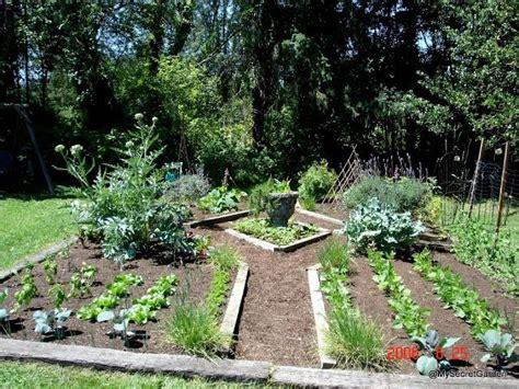 patio garden ideas vegetables photograph patio vegetab