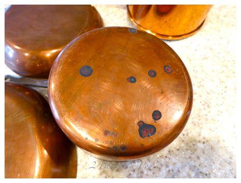 clean copper pots  pans  bees   pod