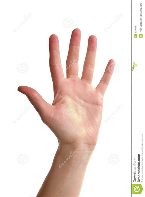Five Fingers by Five Fingers Stock Photo Image Of Five Pretty Human