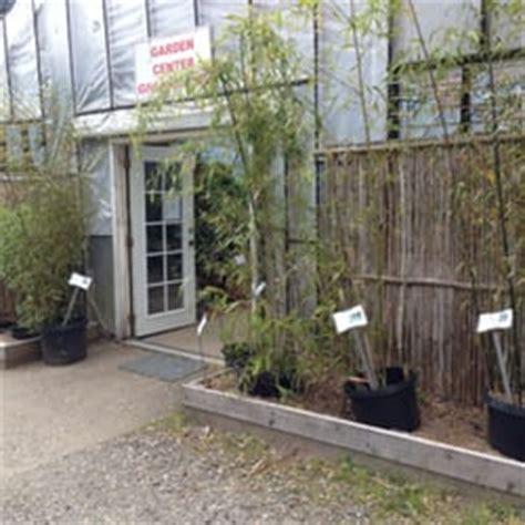 raintree nursery nurseries gardening morton wa