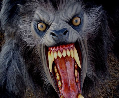 an american werewolf in london lifesize prop the green head