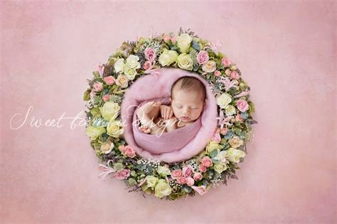 newborn photography digital backdrop  design