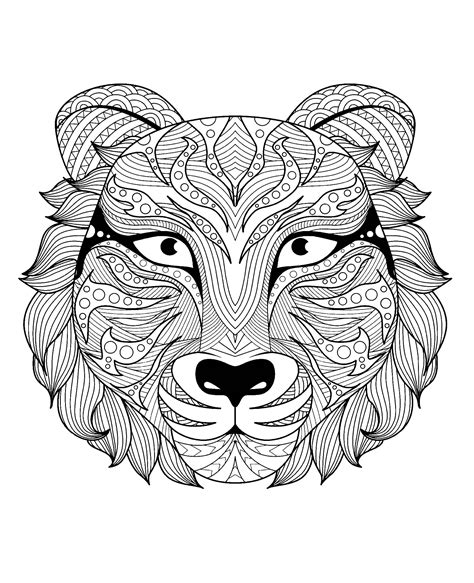magnifique tete de tigre tigres coloriages difficiles