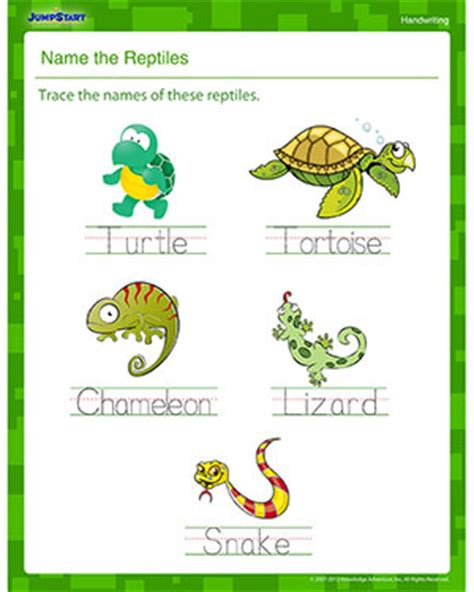name the reptiles printable handwriting worksheet