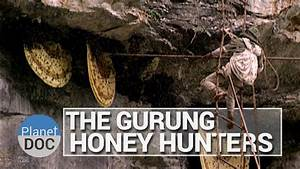 The Gurung Honey Hunters | Culture - Planet Doc Full ...