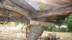 Cabane Dans Les Arbres Construction : construire une cabane dans les arbres pour la joie des enfants d couvrir ~ Mglfilm.com Idées de Décoration
