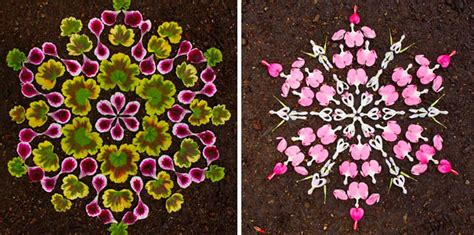 Colorful Mandala Designs Made From Flowers And Plants By