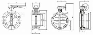 Double Flange Butterfly Valve  Buy Butterfly Valve From