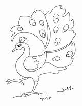 Peacock Coloring Pages Bird Drawing Dancing Printable Bestcoloringpages Painting sketch template