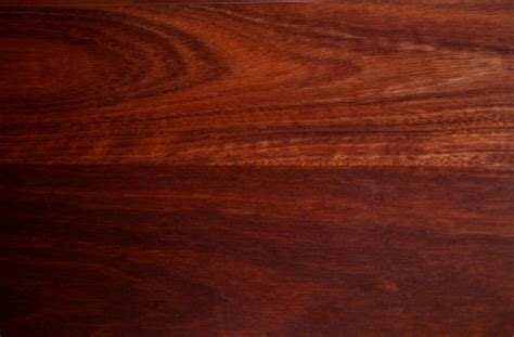 francis furniture australian timbers species timber