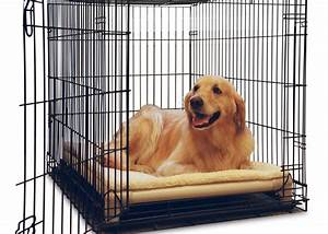 Kuranda dog beds orthopedic and chew proof dog beds for Puppy proof dog bed